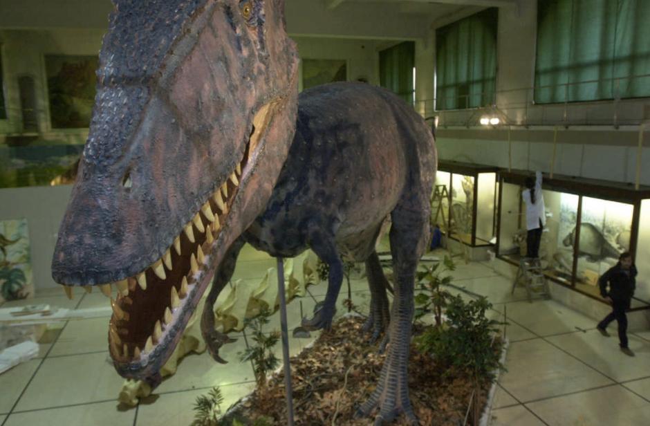 Photo of Museo Argentino de Ciencias Naturales Bernardino Rivadavia