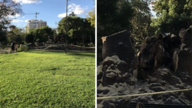 Photo of Destruyeron el Ombú del Parque Rivadavia